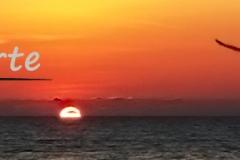 Trauerkarten Trauerkarte Motiv Sonnenuntergang Meer