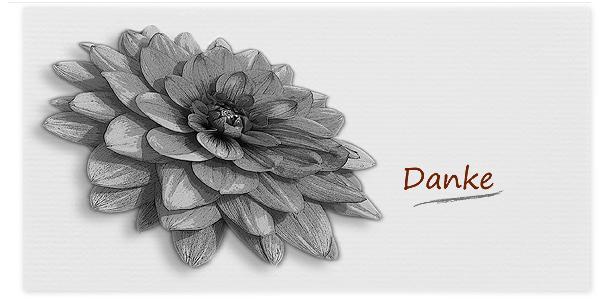 Danksagungen Danksagung Motiv Blüten