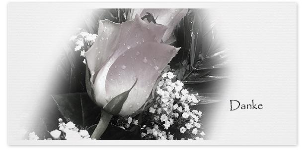 Trauerkarten Motiv Rose 027 BL