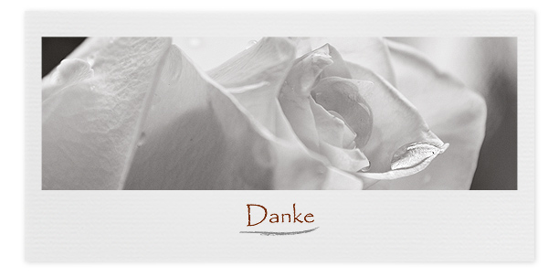 Danksagungskarte Motiv Rose 048 BL