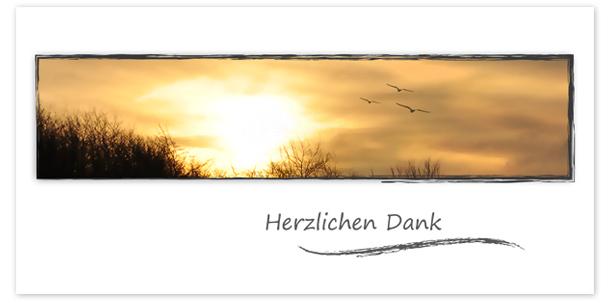 Trauerkarten Motiv Sonnenuntergang mit Möwen 020 SU