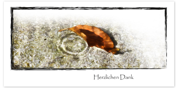 Trauerkarten Motiv Herbstblatt im Wasser 017 WS