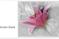 Danksagung, Danksagungskarte Motiv D 025 BL