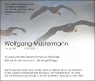 Traueranzeige Motiv A 017 VO - Vögel, Wildgänse, fliegen