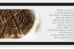 Trauerkarte, Bilder, Baumstamm, Baumringe, Lebensringe, Motiv - Nr. 017 BA