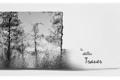 Trauerkarte, Bilder, Bäume, Wasserspiegelung; Motiv - Nr. 021 BA