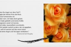 Trauerkarte, Bilder, Rose, Rosen, Motiv - Nr. 015 BL