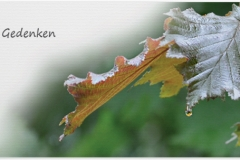 Trauerkarte, Bilder, Herbstblatt, Herbst, Motiv - Nr. 019 BL