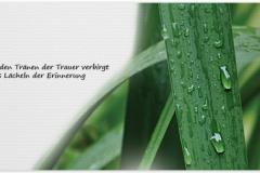 Trauerkarte, Bilder, Regentropfen, Blatt, Tränen, Motiv - Nr. 021 BL