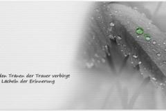 Trauerkarte, Bilder, Motiv, Regen, Regentropfen, Trauer - Nr. 022 BL