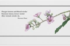 Trauerkarte, Bilder, Kirschblüte, Abschied, Motiv - Nr. 024 BL