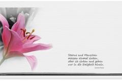 Trauerkarte, Bilder, Lilie, Blumen, Trauer, Abschied, Motiv - Nr. 025 BL