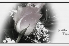 Trauerkarte, Bilder, Rose, Rosen, Trauer, Abschied, Motiv - Nr. 030 BL