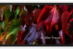 Trauerkarte, Bilder, Herbstblätter, Herbst, Abschied, Motiv - Nr. 016 HE
