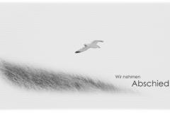 Trauerkarte, Bilder, Motiv, Dünen, Möwe, Meer, Motiv - Nr. 019 VO