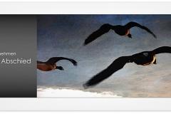 Trauerkarte, Bilder, Vögel, Wildgänse, Abschied, Trauer Motiv - Nr. 017 VO