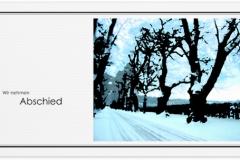 Trauerkarte, Bilder, Baumallee, Winter, Schnee, Bäume, Trauer, Motiv - Nr. 015 WE