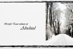Trauerkarte, Bilder, Baumallee, Winter, Schnee, Wald, Trauer, Motiv - Nr. 016 WE