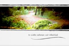 Trauerkarte, Bilder, Waldweg, Weg, Trauer, Abschied, Motiv - Nr. 018 WE
