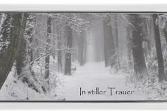 Trauerkarte, Bilder, Baumallee, Winter, Schnee, Trauer, Motiv - Nr. 021 WE