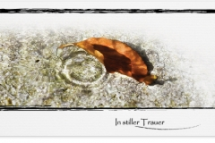 Trauerkarte, Bilder, Herbstblatt, Herbst, Wasserringe Motiv - Nr. 017 WS