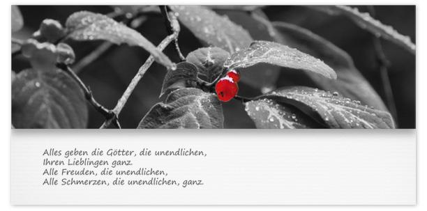 Trauerkarten Motiv rote Beere 017 BL