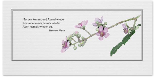 Trauerkarten Motiv Kirschblüte 024 BL