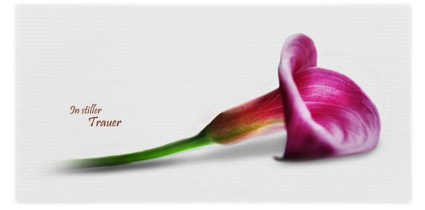 Trauerkarten Motiv Lilie 034 BL