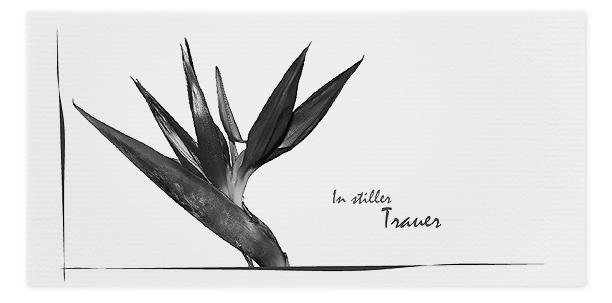 Trauerkarten Motiv Strelitzie 042 BL