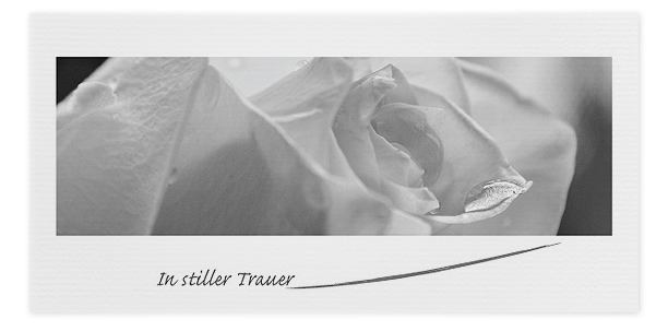 Trauerkarten Motiv Rose 048 BL