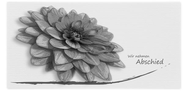 Trauerkarten Motiv Blume 016 BW
