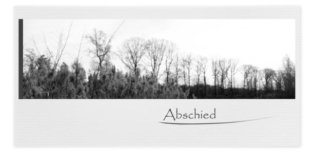 Trauerkarten Motiv Bäume Winter 021 BW