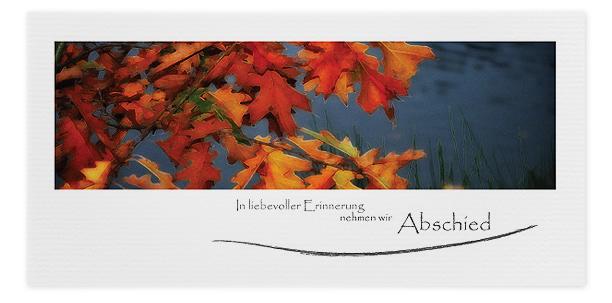 Trauerkarten Motiv Herbstblätter 017 HE