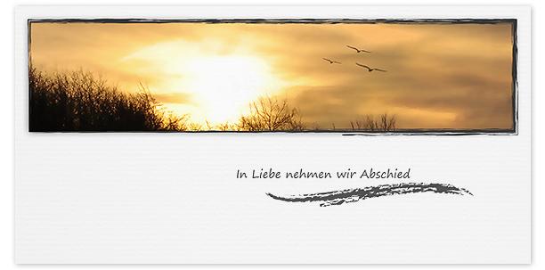 Trauerkarten Motiv Sonnenuntergang Möwen 020 SU