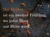 trauerkarten_zitat13