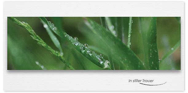 Trauerkarte Wassertroppfen Motiv - Nr. 016 BL