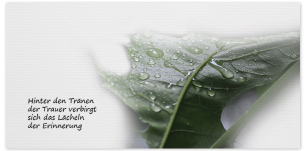 Trauerkarte Tränen Regentropfen Motiv - Nr. 020 BL