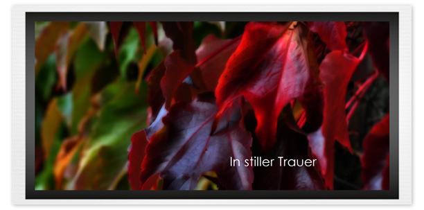 Trauerkarte Herbst Motiv - Nr. 016 HE