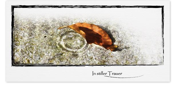 Trauerkarte Herbst Motiv - Nr. 017 WS