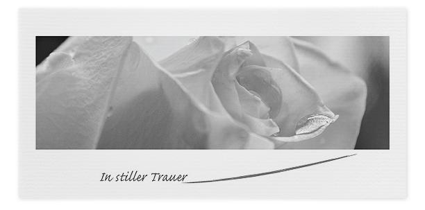 Trauerkarte weiße Rose Motiv - Nr. 048 BL