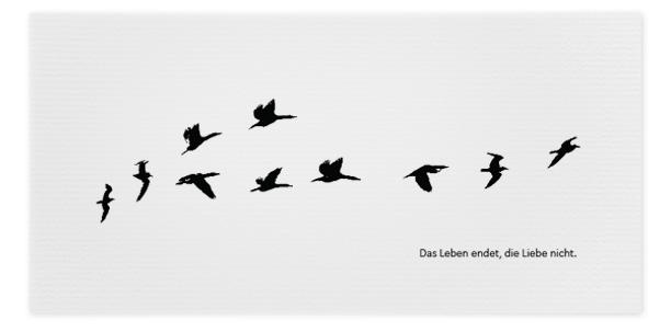 Trauerkarte Kraniche Vögel Motiv - Nr. 020 VO