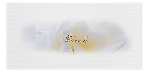 Danksagung Rose Rosenblüte Trauerfall Motiv Nr. DBL 049